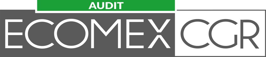 ECOMEX_LOGOTYPE_AUDIT
